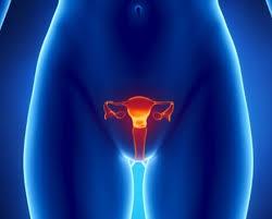 καρκίνων των ωοθηκών